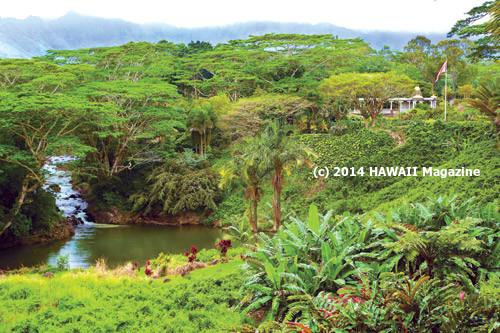 Image result for kauai's hindu monastery in hawaii